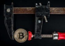 Why are Bitcoins So Volatile? Learn More Before Investing